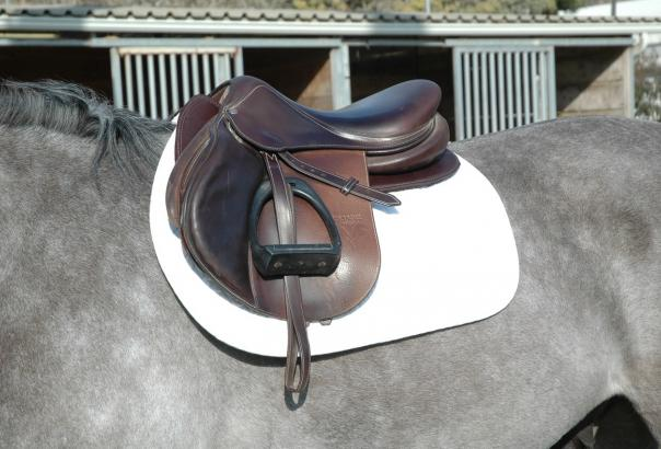 SaddleRight | Handmade Custom Orthopedic Saddle Pads